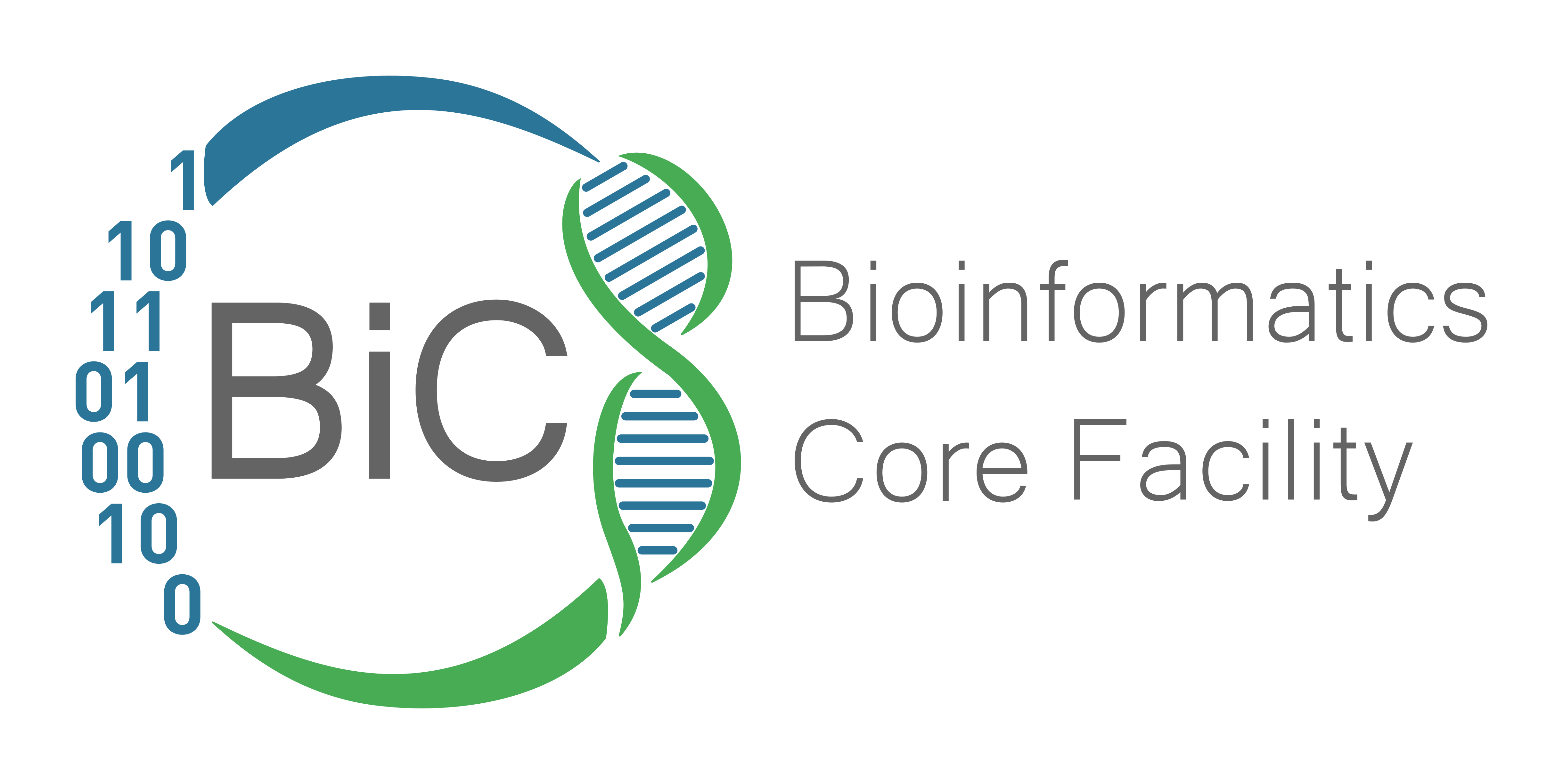 Bioinformatics Core Facility